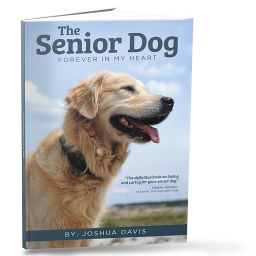 Your Senior Dog - Forever In My Heart Download